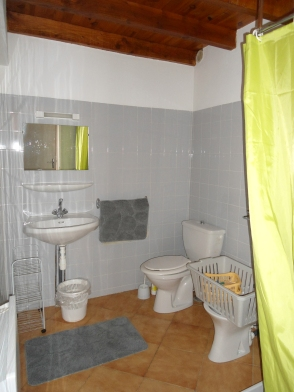 GÎTE N° 1 - Salle d'eau avec douche, lavabo et toilettes.